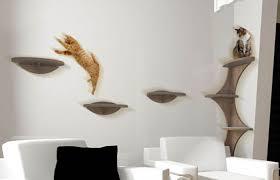 floating shelves for cats floating