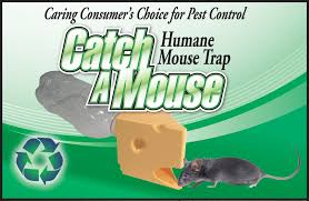 consumers choicecatch a mouse catch a mouse retail box recycle empty bottlecatch