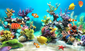 Free Underwater World Live wallpaper 2015 APK Download For Android