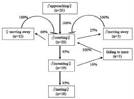 Flow Chart Of The Mating Behavioural Sequences Of S Flava