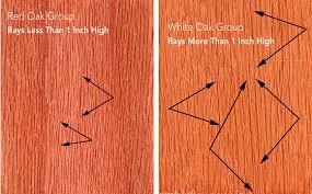 oak wood for furniture. showing differences in ray height arrows as viewed on the flatsawn or tangential surface furniture made with red oak a primary wood can indicate its for r