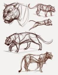 Sketches Animal 594 Best Animal Creature Art Images Drawings Sketches Animal