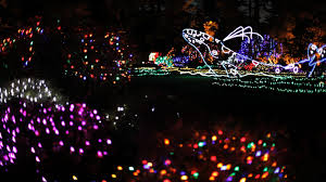 Forest Grove Holiday Light Parade 2017 Holiday Lights In Oregon Travel Oregon