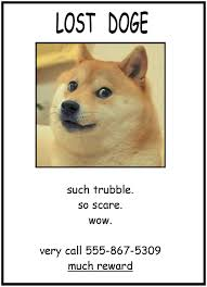 lost doge. Brilliant Doge So Iu0027m Really Bored And Shit I Was Considering Putting Lost Doge  Posters Around My University Inside Lost E