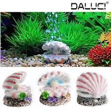 Aquarium Background Pictures Buy Daluci Shell Pearl Air Stone Aquarium Fish Tank Decor Aquarium