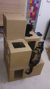 Cardboard House For Cats Best 25 Tierbedarf Ideas Only On Pinterest Design Kratzbaum