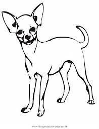 Disegno Chihuahua6 Animali Da Colorare