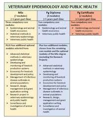 academic dissertation topics about leadership management