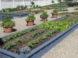 Small Picture 50 best Garden Bed Design Garden design Permaculture