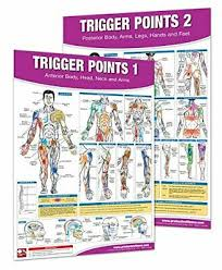 Myofascial Pain And Dysfunction The Trigger Point Manual 2