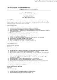 Sample Resume Dental Assistant Directory Resume Sample