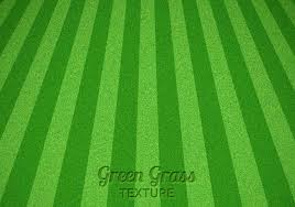 grass texture hd. Mowed Green Grass Vector Texture Hd