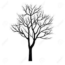 Arbre Dessin Les Arbres Avec Branche Morte