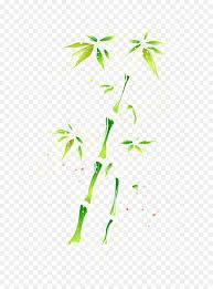 bamboo watercolor painting green plant flora png