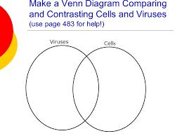 Cell Venn Diagram Unicellular And Multicellular Venn Diagram