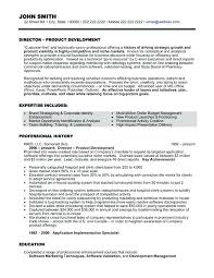Director Resume Template Management Template Managers Jobs Director