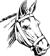 horse head clipart. Wonderful Horse Horse Head In Clipart O