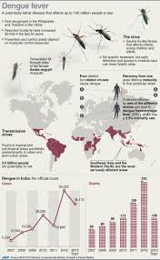 Pin On Mosquitoes