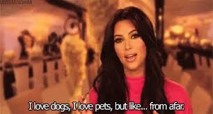Kim Kardashian Quotes Enchanting Kim Kardashian Funny GIFs POPSUGAR Celebrity