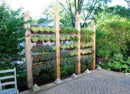 Download Backyard Privacy Ideas Cheap Solidaria Garden Yard Privacy Ideas