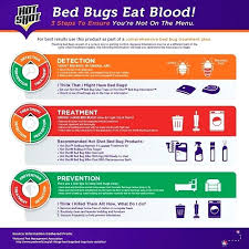 diy bed bug spray use as part of a comprehensive bed bug treatment plan for best