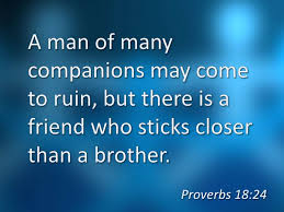 THE GIFT OF FRIENDSHIP PROVERBS AND PARABLES 40 Dee Brestin Stunning Proverb Friend