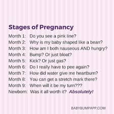 Pregnancy Quotes Best Pregnancy Quotes Aiyoume