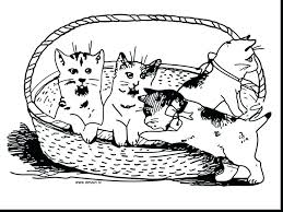 Three Little Kittens Coloring Pages Dr Schulz