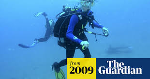 Husband admits killing wife in scuba death on Great Barrier Reef |  Australia news | The Guardian
