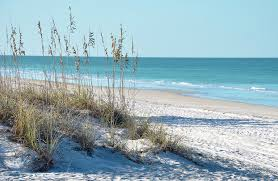 Image result for beach scene