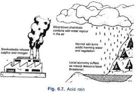 understanding the causes and effects of acid rain on environment