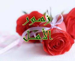 لزهور أنواع وللكلمات حروف images?q=tbn:ANd9GcQ