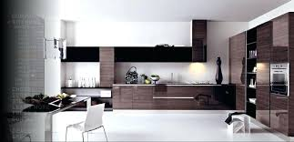 Italian Modern Kitchen Cabinets Amazing Modern Italian Kitchen Design 48 And Cabinets Images Modern