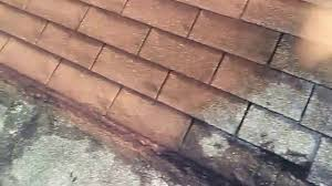 how to spay shingles roof painting