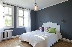 house blue grey walls inspirations blue walls grey carpet pale living room grey