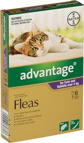 Advantage Ii Dosage Chart For Cats Products Details Bayer Animal Health Nz