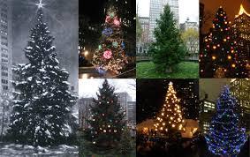 NoMad Came Before The Rockefeller Center Christmas TreeNew Christmas Tree