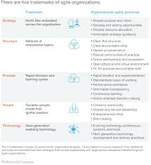 Ca Technologies Org Chart The Five Trademarks Of Agile Organizations Mckinsey