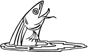 Small Picture Catfish 2 coloring page Free Printable Coloring Pages