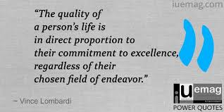 Professional Quotes Classy 48 Remarkable Commitment Quotes To Inspire Your Professional Life