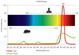 Animal Research Lab Lighting