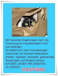 Katzenzitate Minimausers Webseite