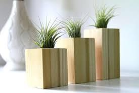 wood plant holders view in gallery wood block air plant holders from gems of the wood plant holders