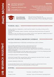 Professional Cv Writing Best   Resume Maker  Create professional