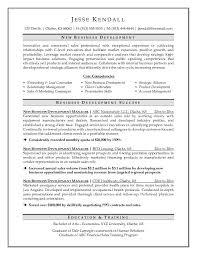 C Level Resume Examples] Executive Resume Samples Visualcv Resume .