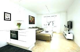 Decorating One Bedroom Apartment Fascinating Studio One Bedroom Apartment Bedroom Models