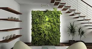 wall hanging planters are ideal for