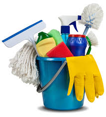 Cleaner House Dawn To Dusk Cleaning House Cleaners Macomb County Mi