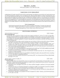 Professional Resumes Perth Government Resume Writers Best Of Government Resume Writers Online