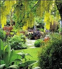 Small Picture Dennis Hundscheidts tropical garden Best tropical gardens in